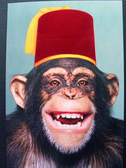The Allee Willis Museum of Kitsch » Monkey in a fez
