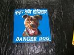 DangerDogs